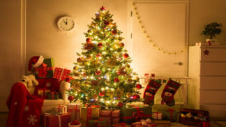 Christmas-tree-natural-artificial-sustainable-ecological